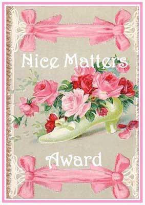 Nice Matters Bloggers Award