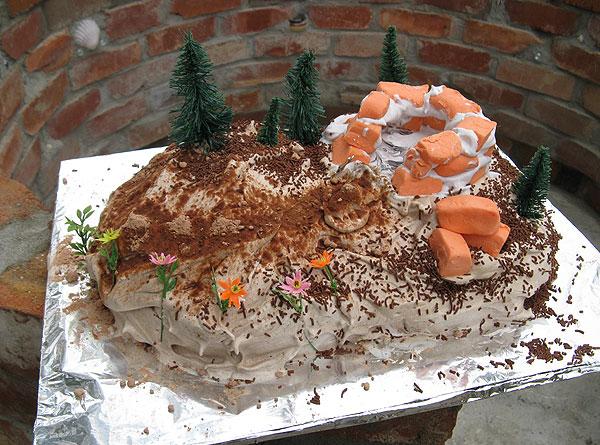 A Castle birthday cake