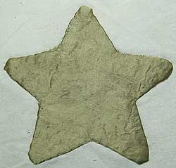 Appliqued Gold Star